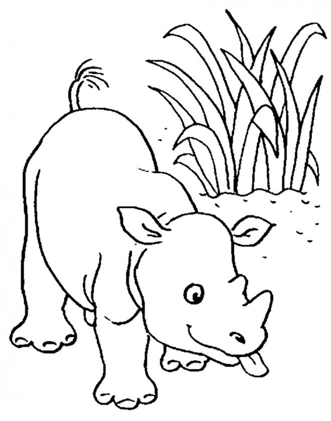 Coloriage et dessins gratuits Petit Hippopotame dans la nature à imprimer