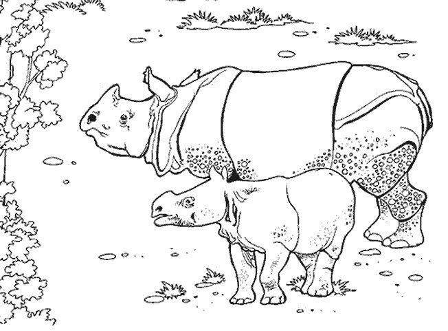 Coloriage et dessins gratuits Rhino et son petit à imprimer