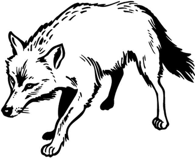 Coloriage un loup en noir dessin gratuit imprimer - Coloriages animaux sauvages ...