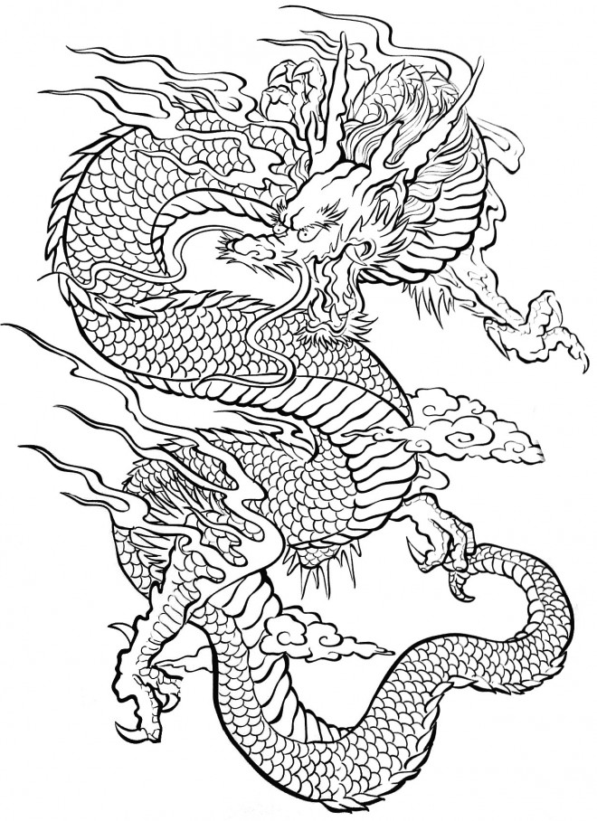Coloriage dragon difficile pour adulte dessin gratuit imprimer - Dessins dragon ...
