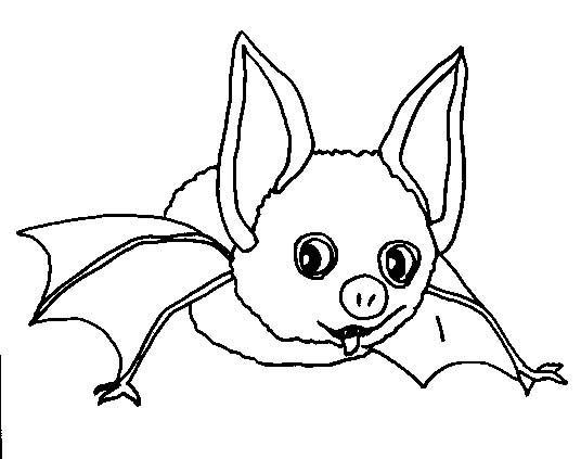 Coloriage chauve souris dr le dessin gratuit imprimer - Image halloween drole ...