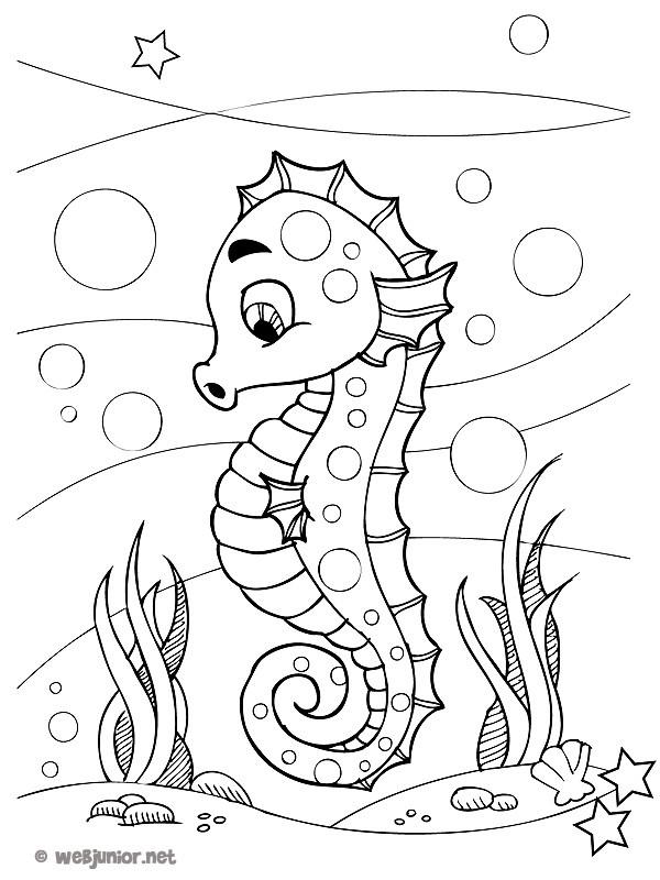 Coloriage Hippocampe Drôle Fond Marin Dessin Gratuit à Imprimer