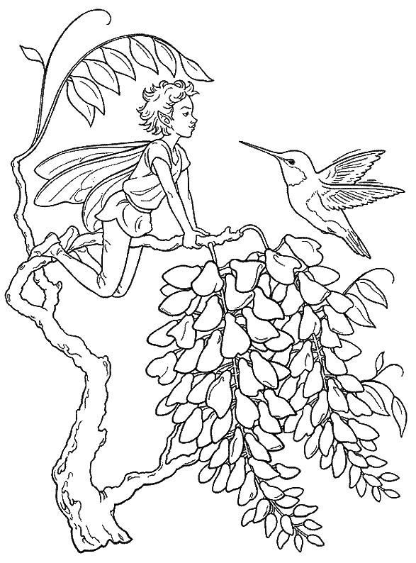 Coloriage et dessins gratuits Fantastique Elfe sur L'arbre à imprimer