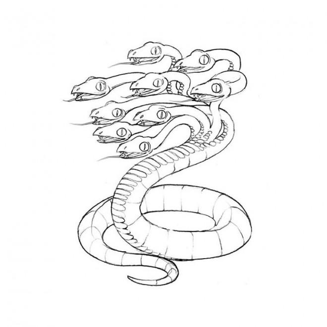 Coloriage et dessins gratuits Fantastique Serpent imaginaire à imprimer
