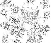 Coloriage et dessins gratuit Adulte Fleurs botanique à imprimer