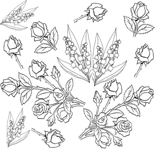 Coloriage et dessins gratuits Adulte Fleurs botanique à imprimer