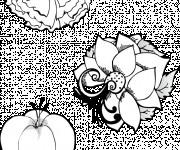 Coloriage et dessins gratuit Des Fleurs exotique couleur à imprimer