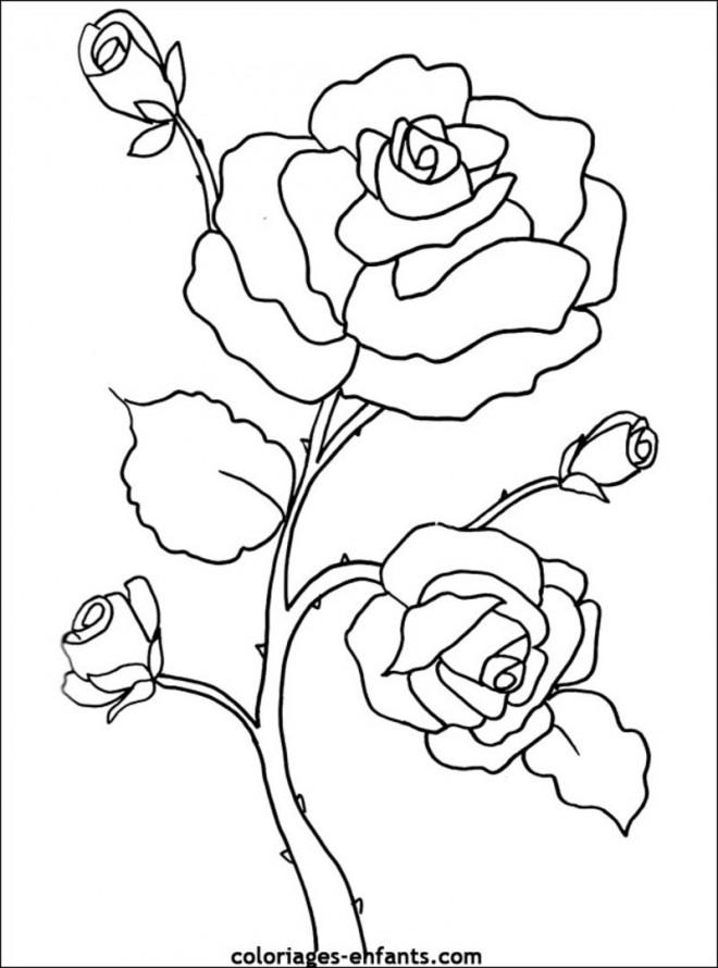 Coloriage et dessins gratuits Fleur Adulte à télécharger à imprimer