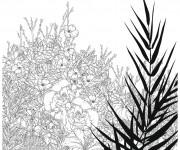 Coloriage et dessins gratuit Fleurs Adulte vecteur à imprimer
