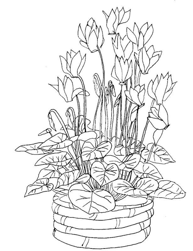 Coloriage et dessins gratuits Fleurs dans la nature à imprimer