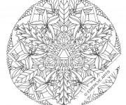 Coloriage et dessins gratuit Fleurs Mandala  adulte à imprimer