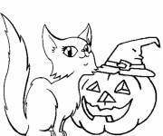 Coloriage Chat et drôle de citrouille d'Halloween