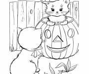 Coloriage chaton dans citrouille d'halloween