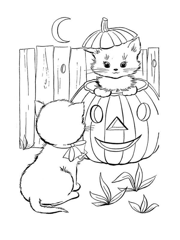 Coloriage et dessins gratuits chaton dans citrouille d'halloween à imprimer