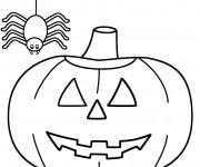 Coloriage Citrouille d'Halloween et Araignée