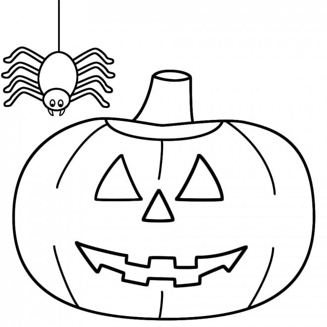 Coloriage Citrouille D Halloween Et Araignée