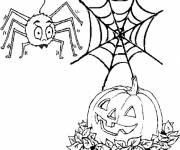 Coloriage citrouille et araignée d'Halloween