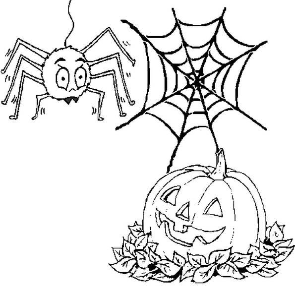 Coloriage et dessins gratuits citrouille et araignée d'Halloween à imprimer