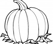 Coloriage dessin  Halloween Citrouille 10