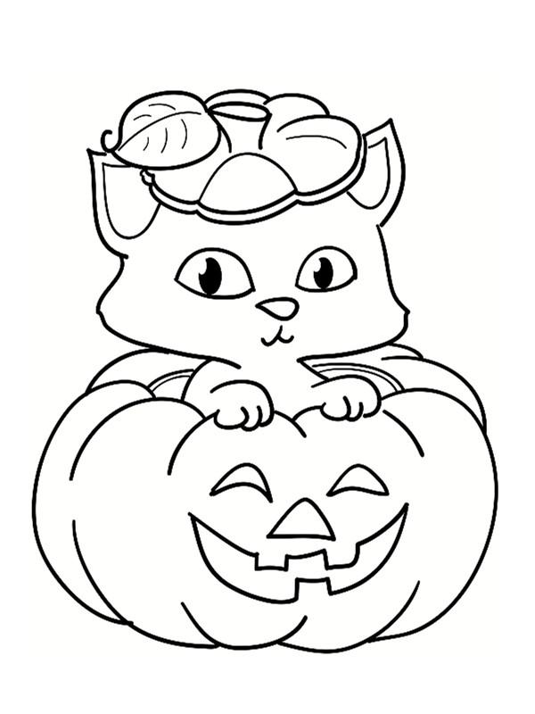 Coloriage un chat mignon sur la citrouille d 39 holloween - Chat a colorier maternelle ...