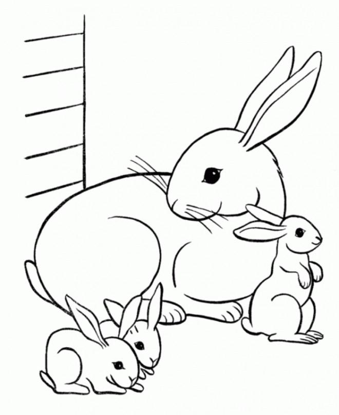 Coloriage et dessins gratuits Des Lapins Mignons à imprimer
