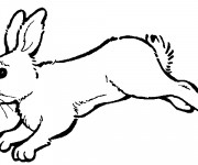 Coloriage Lapin en courant
