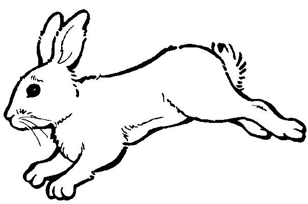 Coloriage et dessins gratuits Lapin en courant à imprimer