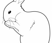 Coloriage Lapin en train de se nettoyer