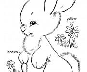 Coloriage dessin  Lapin Mignon 6