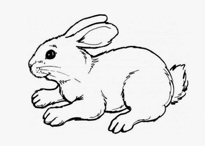 Coloriage et dessins gratuits Lapin Mignon à découper à imprimer
