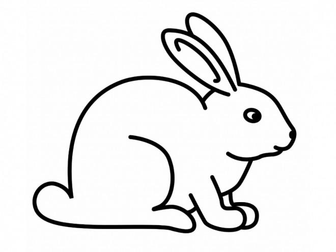Coloriage lapin mignon au crayon dessin gratuit imprimer - Dessin lapin mignon ...