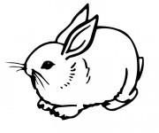 Coloriage et dessins gratuit Lapin Mignon en ligne à imprimer