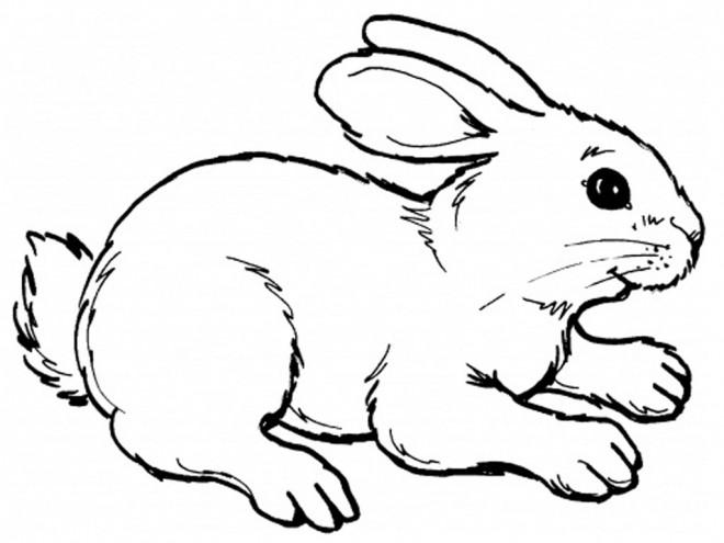 Coloriage et dessins gratuits Lapin Mignon en noir et blanc à imprimer