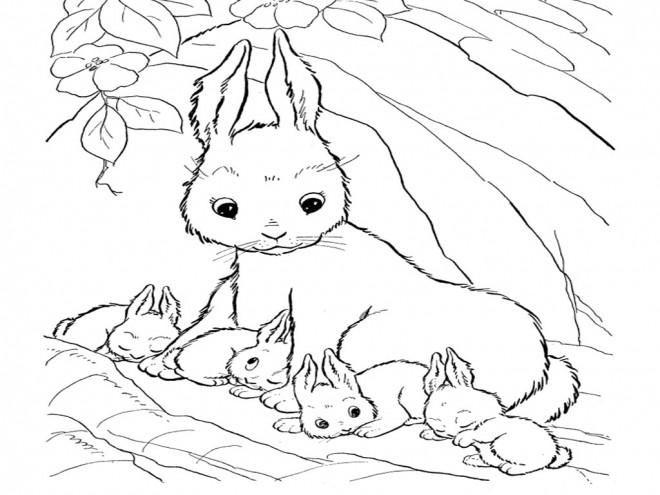 Coloriage et dessins gratuits Lapine protège ses petits à imprimer