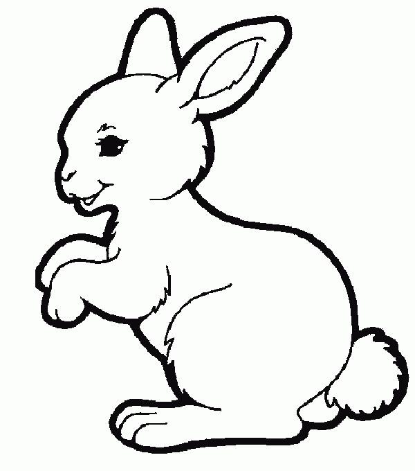 Coloriage petit lapin mignon vecteur dessin gratuit imprimer - Dessin de lapin trop mignon ...