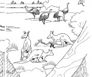 Coloriage Animaux de Zoo à colorier