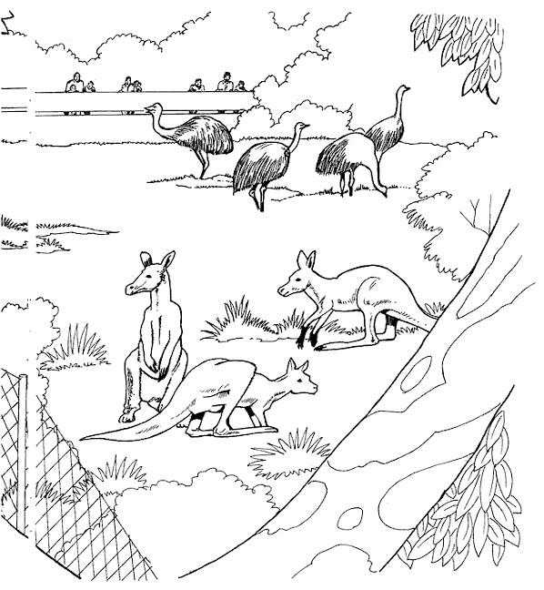 Coloriage et dessins gratuits Animaux de Zoo à colorier à imprimer
