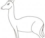 Coloriage et dessins gratuit Animaux Sauvages 4 à imprimer