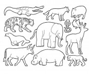 Coloriage et dessins gratuit Animaux sauvages d'Afrique à imprimer