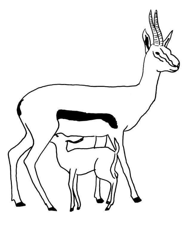 Coloriage et dessins gratuits Cerf et Son Petit à imprimer