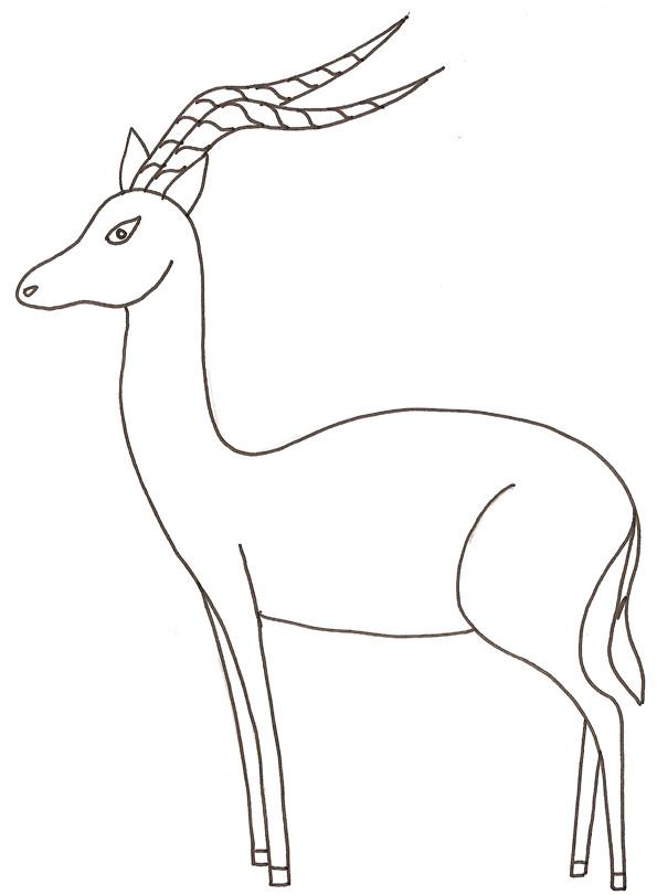 Coloriage gazelle sauvage dessin gratuit imprimer - Gazelle dessin ...