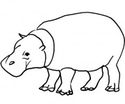 Coloriage et dessins gratuit hippopotame d'Afrique à imprimer