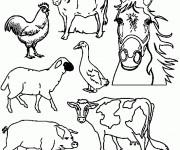 Coloriage et dessins gratuit Les Animaux 65 à imprimer