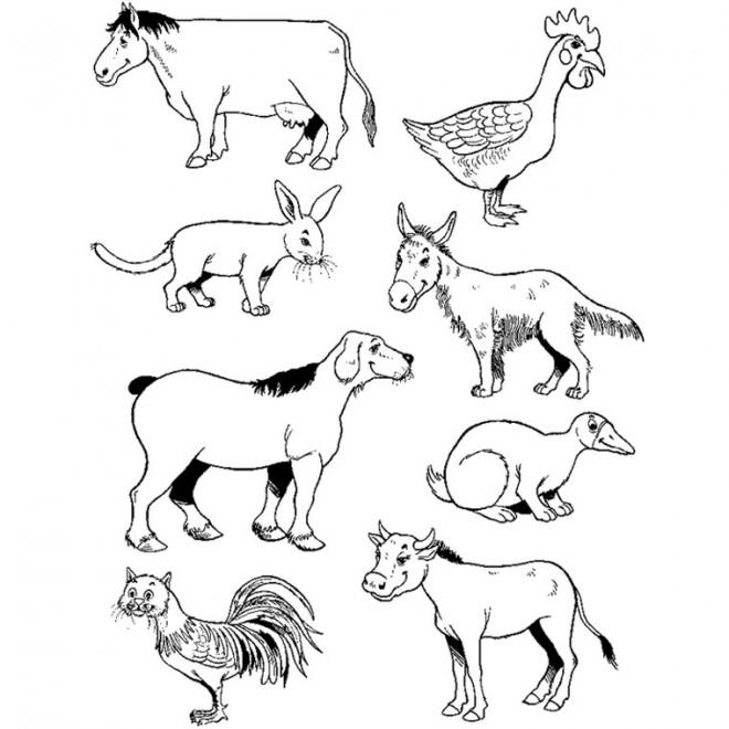 Coloriage Les Animaux de La ferme humoristique dessin gratuit à imprimer