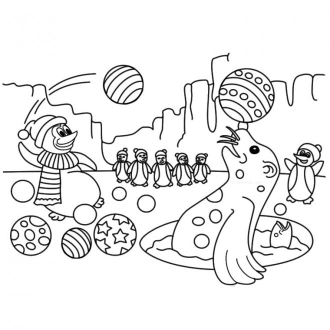 Coloriage et dessins gratuits Phoque et Pingouin de Cirque à imprimer