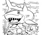 Coloriage Requin Cartoon