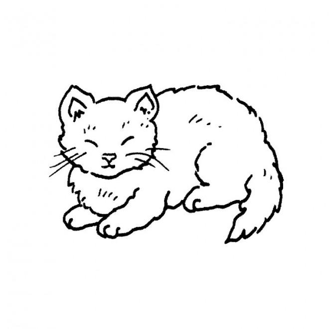 Coloriage un chat domestique dessin gratuit imprimer - Chat a colorier maternelle ...