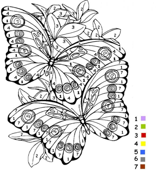 Coloriage Magiques Chiffres Papillons dessin gratuit à imprimer