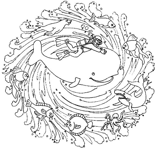Coloriage et dessins gratuits Mandala Baleine à imprimer