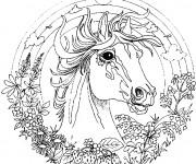 Coloriage Mandala cheval